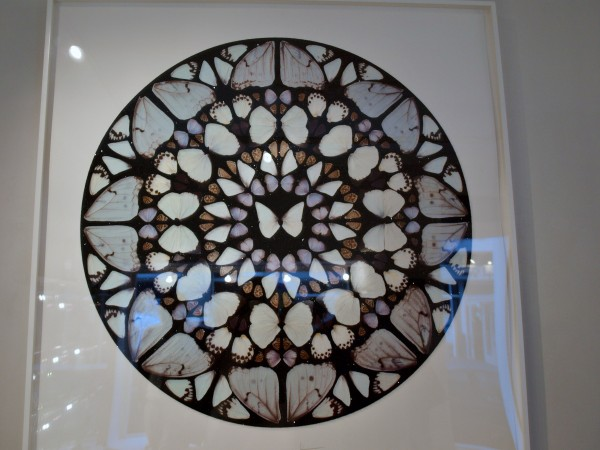 Stoneman Gallery - Chris Billington 3
