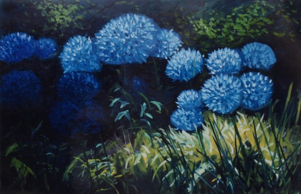Cecil Riley - Light and Shade - Agapanthus (2007) - 36in x 24in - oil on paper